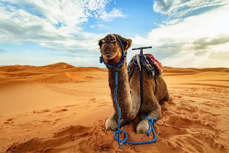 Visto de turismo Marrocos